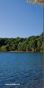 Thoreau. Laguna de Walden Pont.
